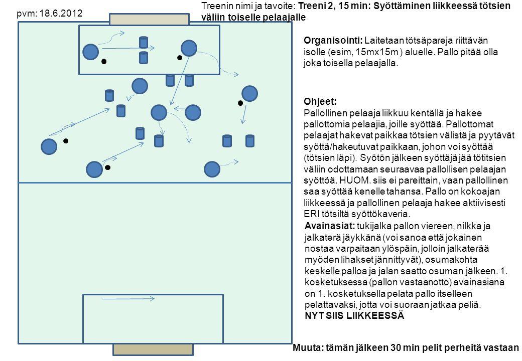 Organisointi: Laitetaan tötsäpareja riittävän isolle (esim, 15mx15m ) aluelle.