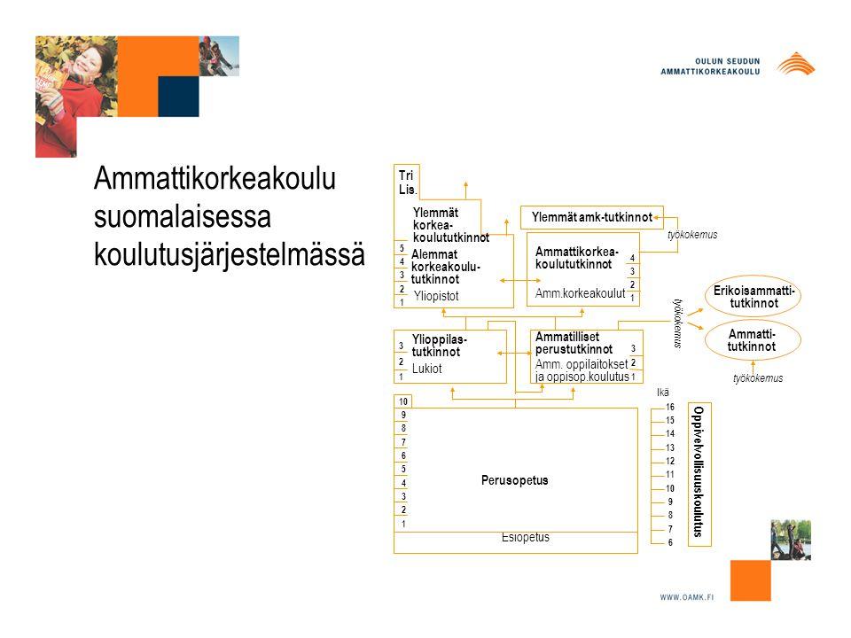 Ammattikorkeakoulu suomalaisessa koulutusjärjestelmässä Oppivelvollisuuskoulutus Perusopetus Esiopetus Ylioppilas- tutkinnot Ammatilliset perustutkinnot Yliopistot Ammattikorkea- koulututkinnot Ylemmät amk-tutkinnot 5432154321 321321 4 3 1 3 10 9 8 7 6 5 4 3 2 1 16 15 14 13 12 11 10 9 8 7 6 Ikä Lukiot Alemmat korkeakoulu- tutkinnot Ylemmät korkea- koulututkinnot Tri Lis.