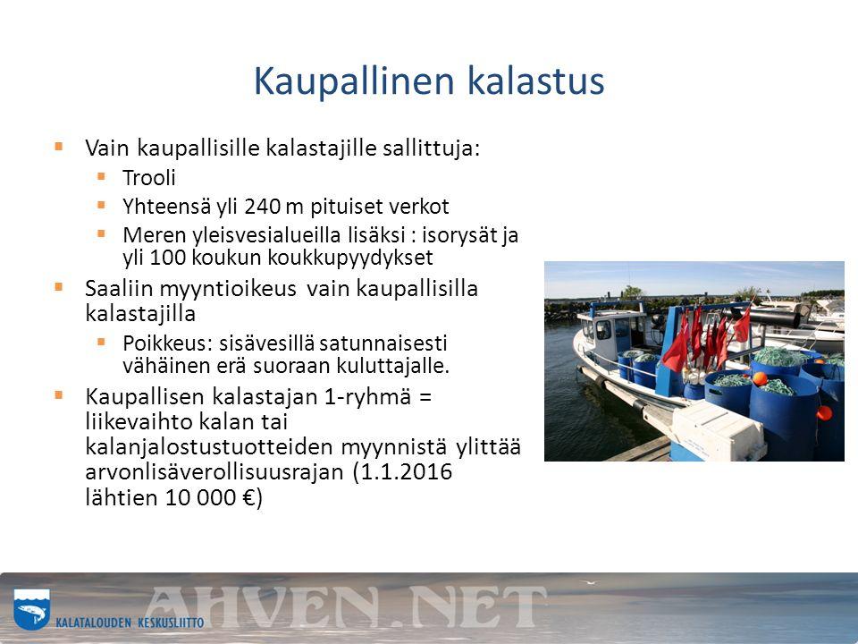 Kaupallinen kalastus  Vain kaupallisille kalastajille sallittuja:  Trooli  Yhteensä yli 240 m pituiset verkot  Meren yleisvesialueilla lisäksi : isorysät ja yli 100 koukun koukkupyydykset  Saaliin myyntioikeus vain kaupallisilla kalastajilla  Poikkeus: sisävesillä satunnaisesti vähäinen erä suoraan kuluttajalle.