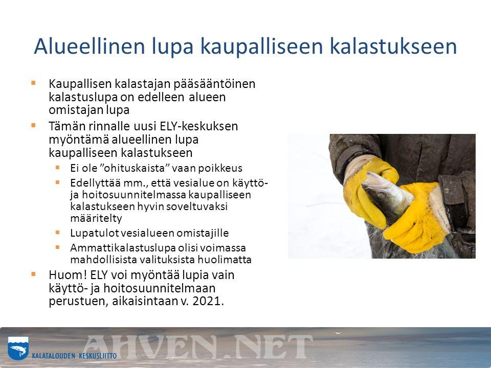Alueellinen lupa kaupalliseen kalastukseen  Kaupallisen kalastajan pääsääntöinen kalastuslupa on edelleen alueen omistajan lupa  Tämän rinnalle uusi ELY-keskuksen myöntämä alueellinen lupa kaupalliseen kalastukseen  Ei ole ohituskaista vaan poikkeus  Edellyttää mm., että vesialue on käyttö- ja hoitosuunnitelmassa kaupalliseen kalastukseen hyvin soveltuvaksi määritelty  Lupatulot vesialueen omistajille  Ammattikalastuslupa olisi voimassa mahdollisista valituksista huolimatta  Huom.