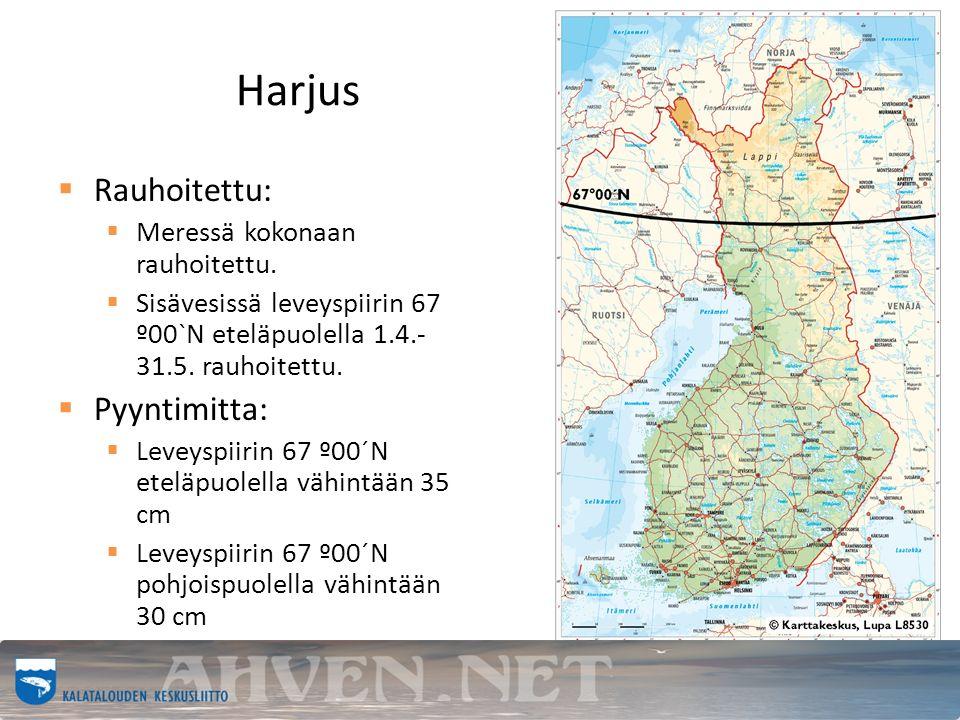 Harjus  Rauhoitettu:  Meressä kokonaan rauhoitettu.