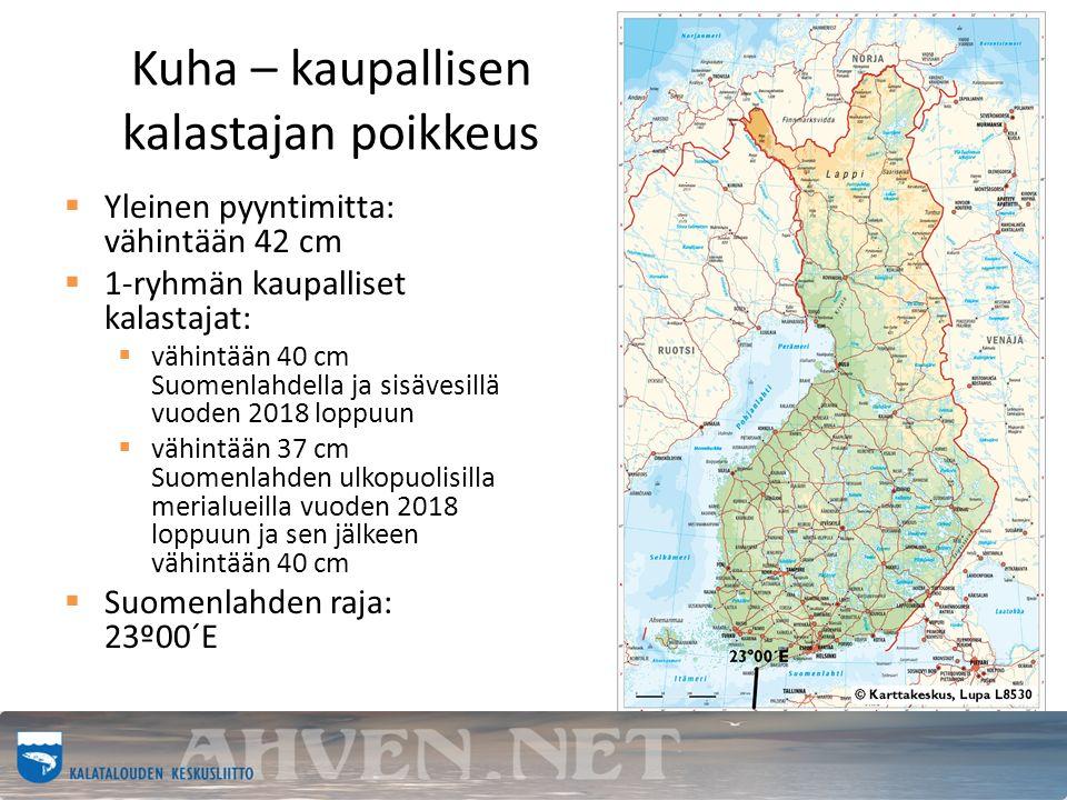 Kuha – kaupallisen kalastajan poikkeus  Yleinen pyyntimitta: vähintään 42 cm  1-ryhmän kaupalliset kalastajat:  vähintään 40 cm Suomenlahdella ja sisävesillä vuoden 2018 loppuun  vähintään 37 cm Suomenlahden ulkopuolisilla merialueilla vuoden 2018 loppuun ja sen jälkeen vähintään 40 cm  Suomenlahden raja: 23º00´E