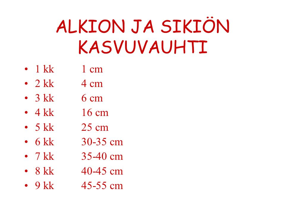 ALKION JA SIKIÖN KASVUVAUHTI 1 kk1 cm 2 kk4 cm 3 kk6 cm 4 kk16 cm 5 kk25 cm 6 kk30-35 cm 7 kk35-40 cm 8 kk40-45 cm 9 kk45-55 cm