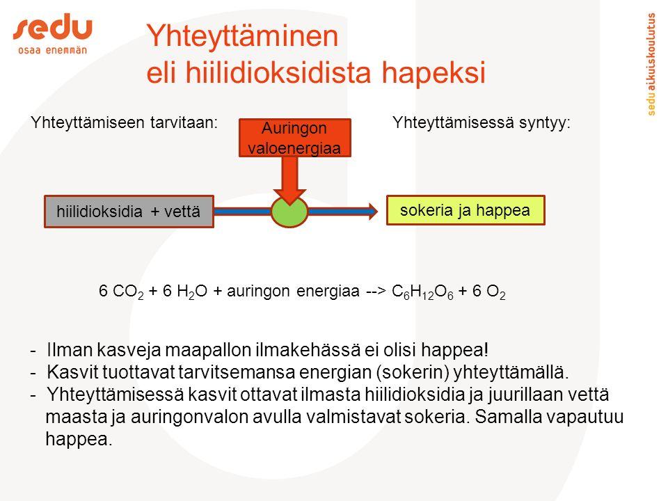 Yhteyttäminen eli hiilidioksidista hapeksi Yhteyttämiseen tarvitaan: Yhteyttämisessä syntyy: Auringon valoenergiaa sokeria ja happea hiilidioksidia + vettä - Ilman kasveja maapallon ilmakehässä ei olisi happea.
