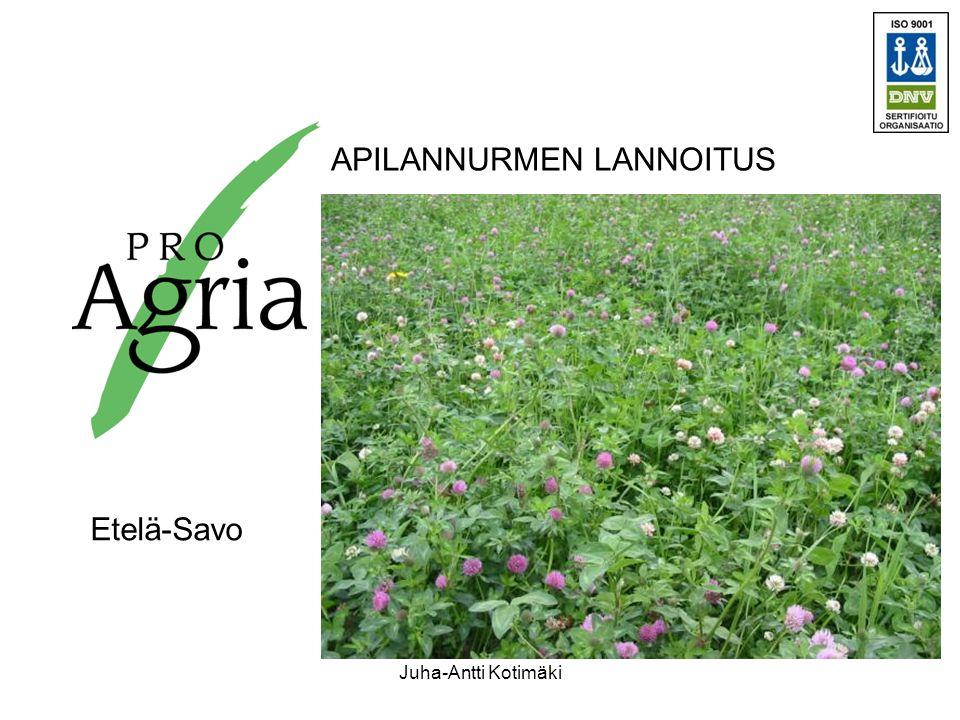 APILANNURMEN LANNOITUS Etelä-Savo Juha-Antti Kotimäki