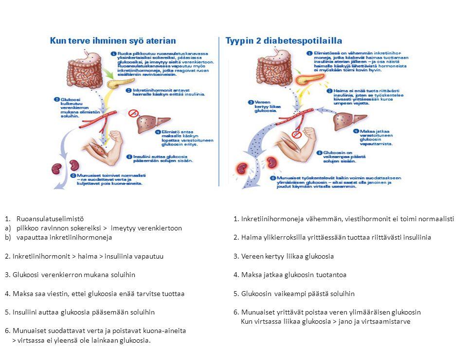 1.Ruoansulatuselimistö a)pilkkoo ravinnon sokereiksi > imeytyy verenkiertoon b) vapauttaa inkretiinihormoneja 2.