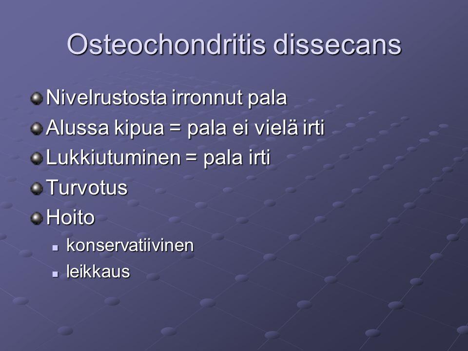 Osteochondritis dissecans Nivelrustosta irronnut pala Alussa kipua = pala ei vielä irti Lukkiutuminen = pala irti TurvotusHoito konservatiivinen konservatiivinen leikkaus leikkaus