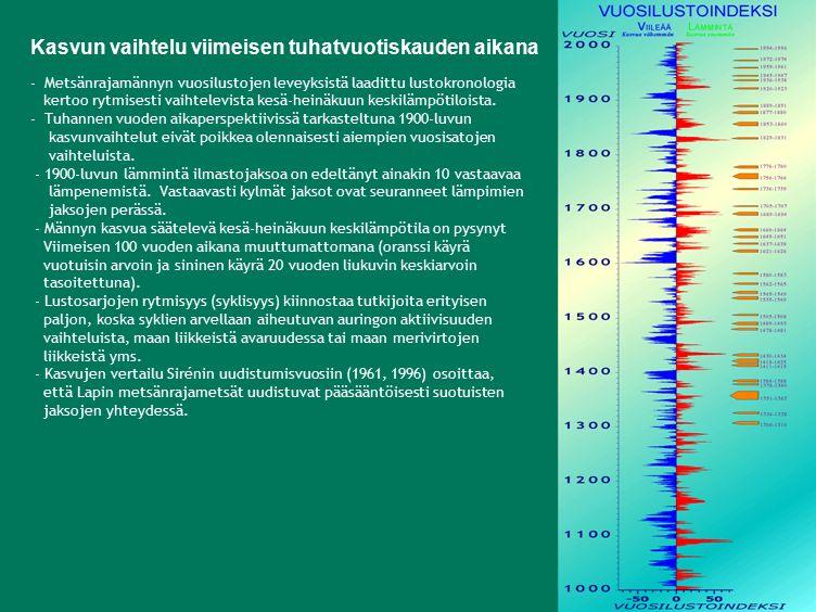 - Metsänrajamännyn vuosilustojen leveyksistä laadittu lustokronologia kertoo rytmisesti vaihtelevista kesä-heinäkuun keskilämpötiloista.