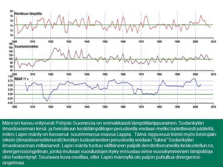 Männyn kasvu erityisesti Pohjois-Suomessa on voimakkaasti lämpötilariippuvainen.