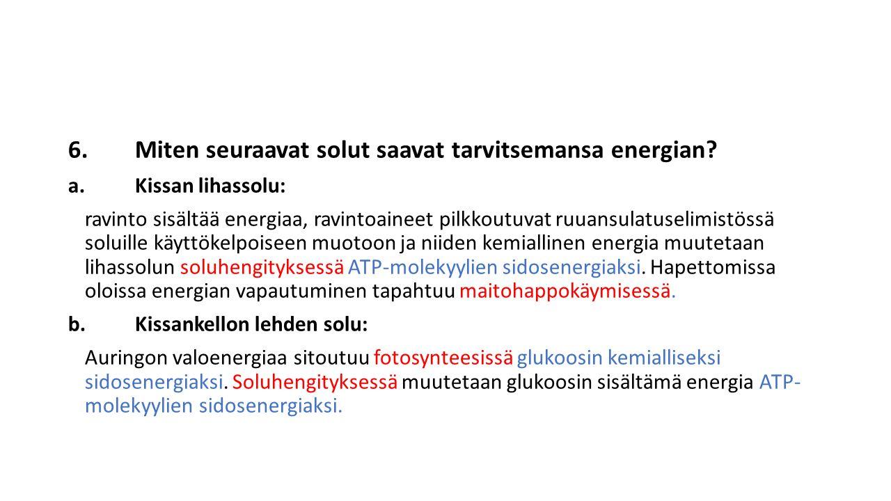 6.Miten seuraavat solut saavat tarvitsemansa energian.