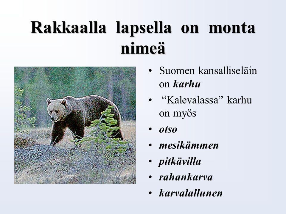 Suomen vaakuna Suomen vaakunassa on punaisella pohjalla kruunupäinen kultainen leijona Leijonan kädessä on hopeinen miekka Leijonan takajalkojen alla on hopeinen sapeli Suomen vaakunassa on yhdeksän hopearuusua