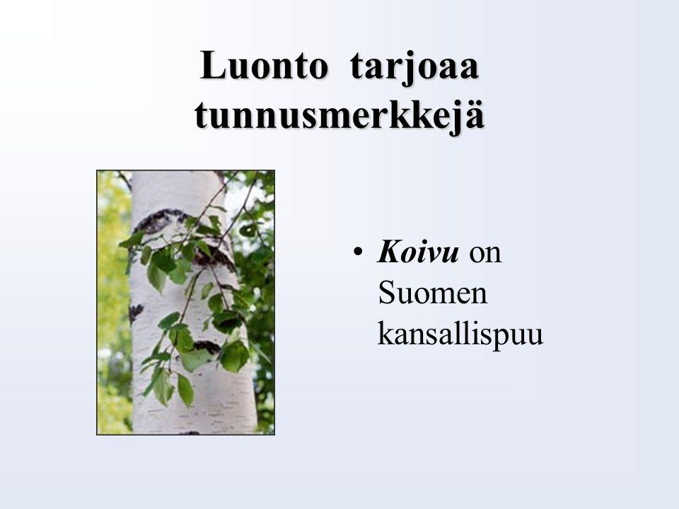 Rakkaalla lapsella on monta nimeä Suomen kansalliseläin on karhu Kalevalassa karhu on myös otso mesikämmen pitkävilla rahankarva karvalallunen