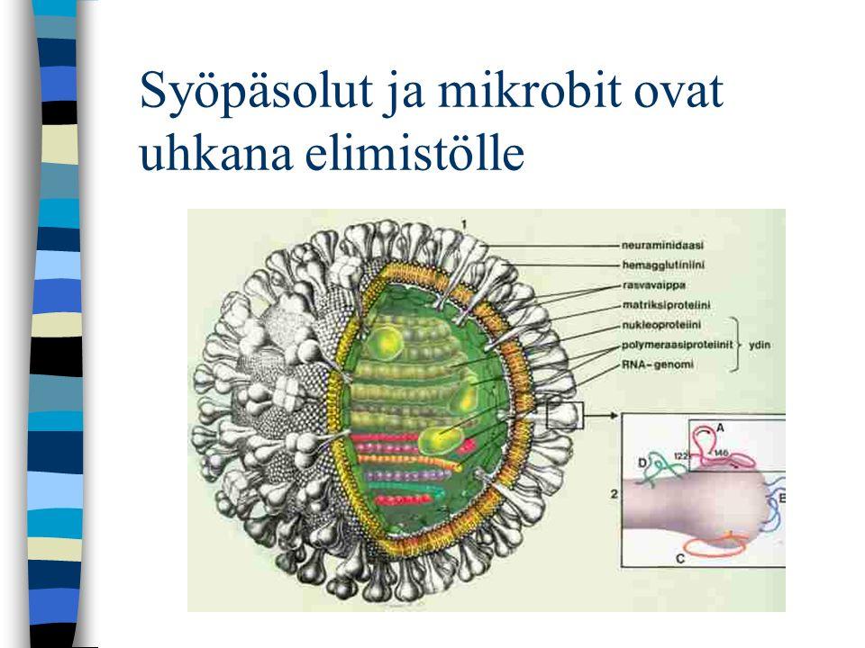 Syöpäsolut ja mikrobit ovat uhkana elimistölle