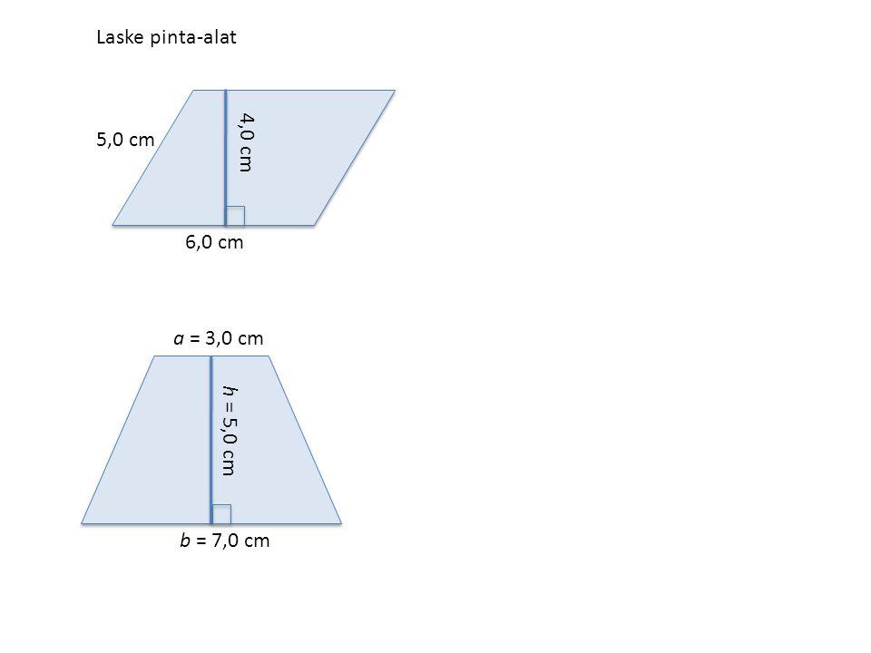 Suunnikkaan pinta-ala = kanta · korkeus Puolisuunnikkaan pinta-ala = 6,0 cm 5,0 cm 4,0 cm a = 3,0 cm b = 7,0 cm h = 5,0 cm