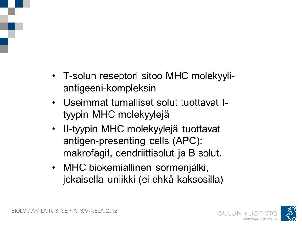 BIOLOGIAN LAITOS, SEPPO SAARELA, 2012 T-solun reseptori sitoo MHC molekyyli- antigeeni-kompleksin Useimmat tumalliset solut tuottavat I- tyypin MHC molekyylejä II-tyypin MHC molekyylejä tuottavat antigen-presenting cells (APC): makrofagit, dendriittisolut ja B solut.