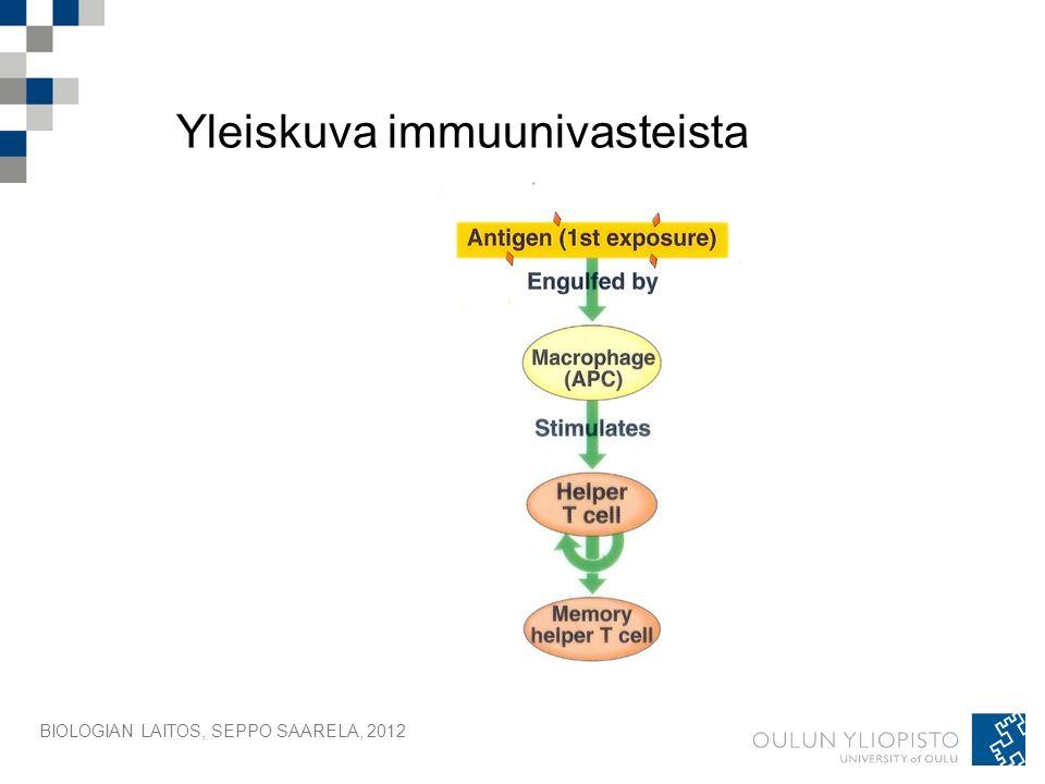 BIOLOGIAN LAITOS, SEPPO SAARELA, 2012 Yleiskuva immuunivasteista