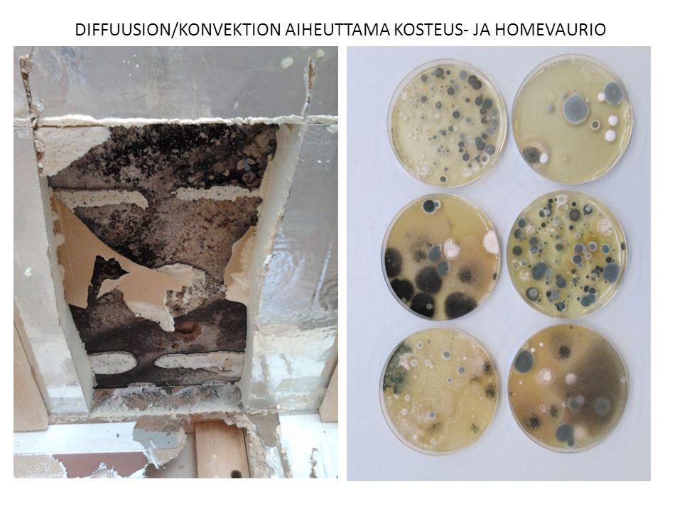 DIFFUUSION/KONVEKTION AIHEUTTAMA KOSTEUS- JA HOMEVAURIO