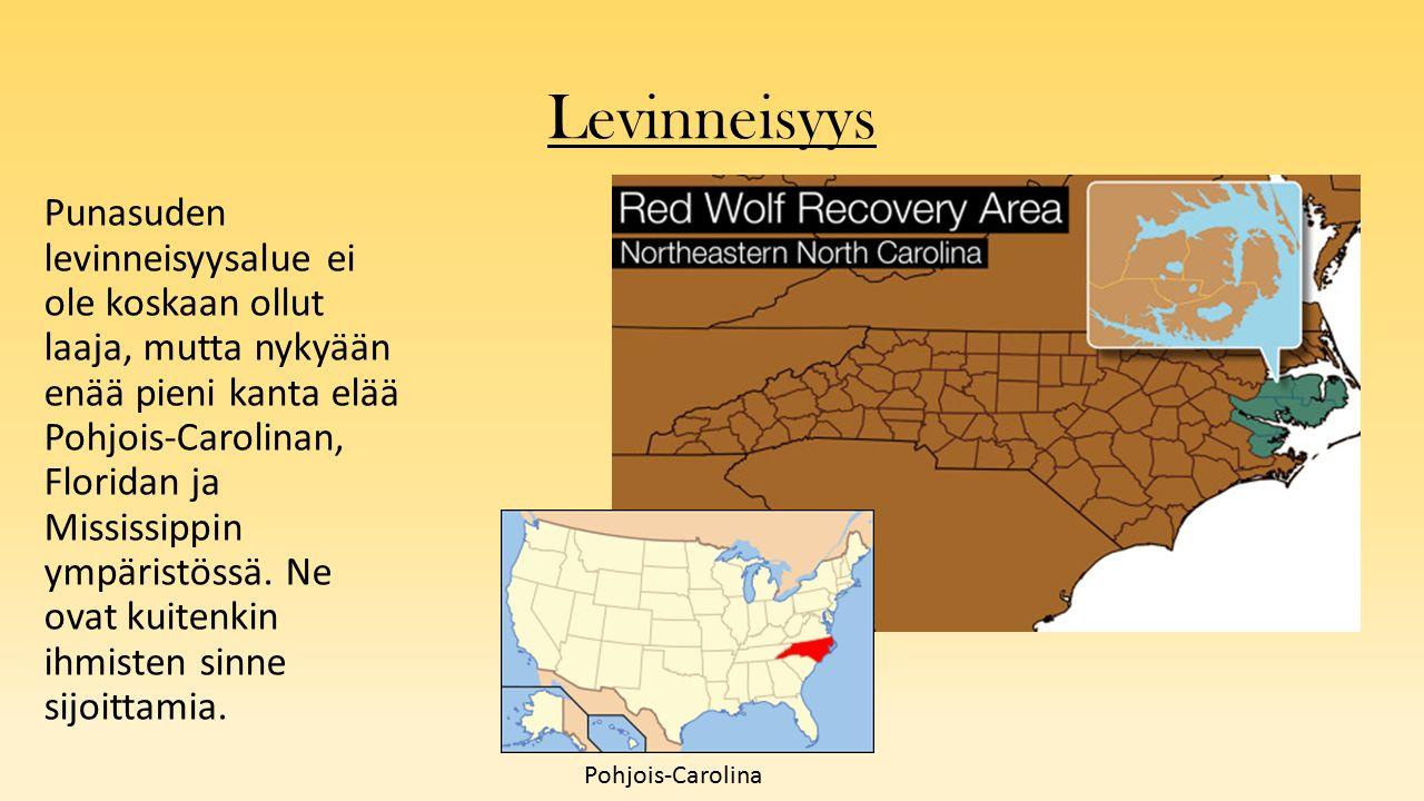 Levinneisyys Punasuden levinneisyysalue ei ole koskaan ollut laaja, mutta nykyään enää pieni kanta elää Pohjois-Carolinan, Floridan ja Mississippin ympäristössä.
