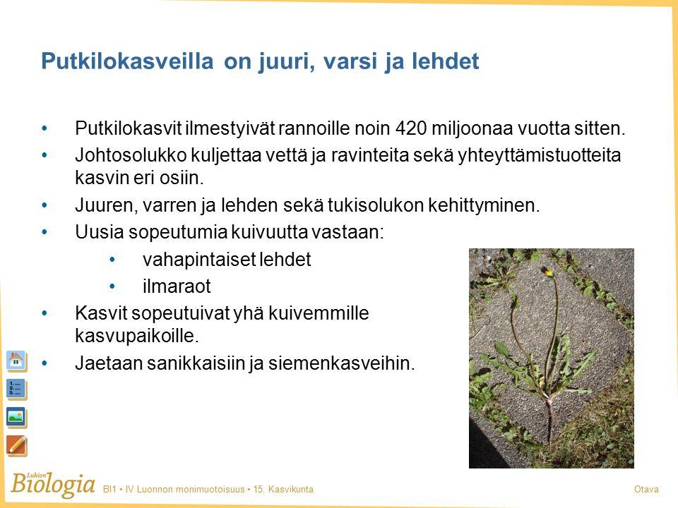 BI1 IV Luonnon monimuotoisuus 15.