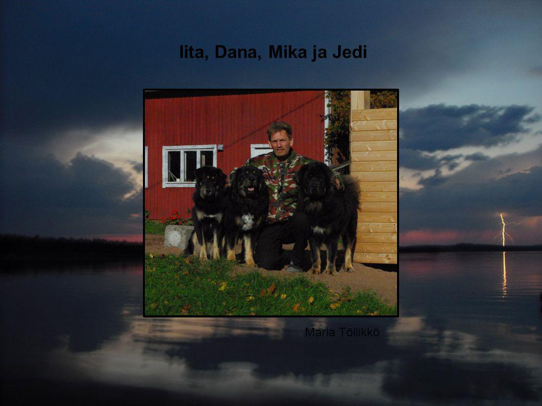 Maria Töllikkö Iita, Dana, Mika ja Jedi
