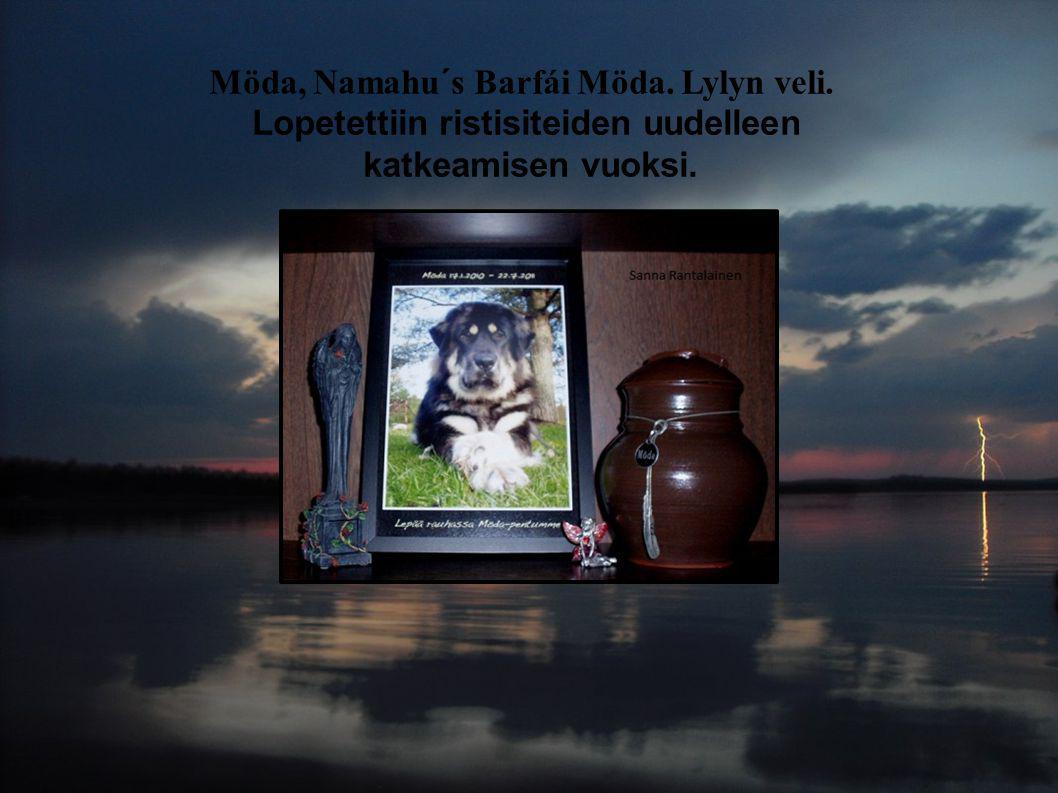 Möda, Namahu´s Barfái Möda. Lylyn veli. Lopetettiin ristisiteiden uudelleen katkeamisen vuoksi.