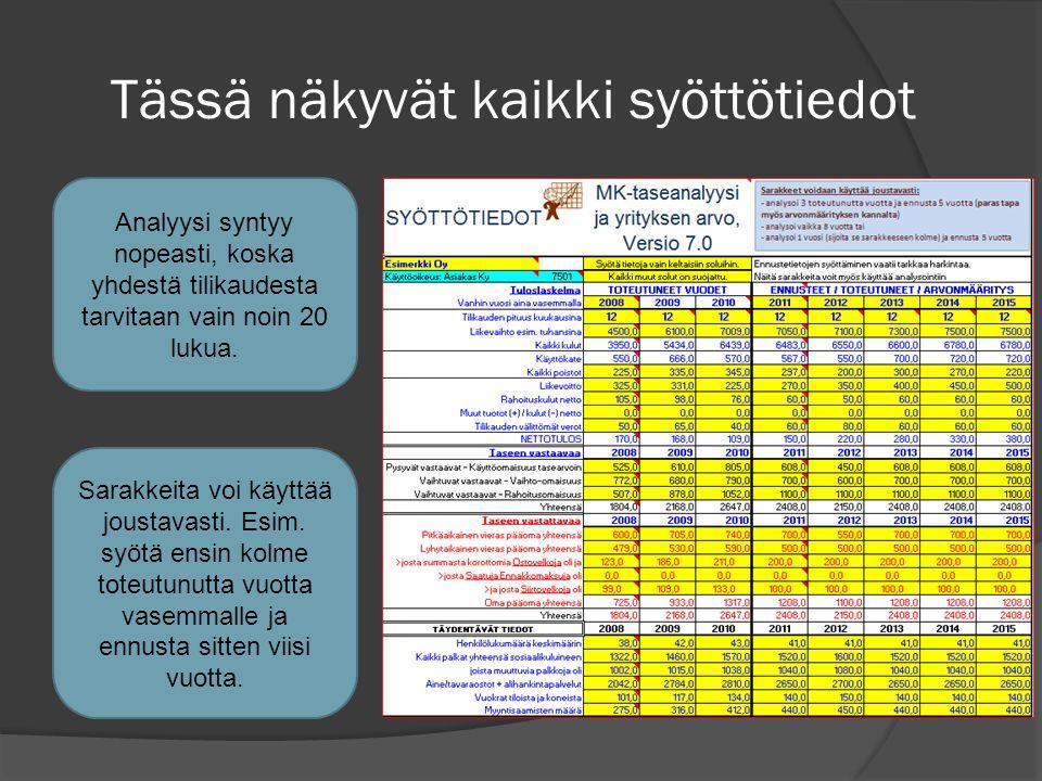 Tässä näkyvät kaikki syöttötiedot Analyysi syntyy nopeasti, koska yhdestä tilikaudesta tarvitaan vain noin 20 lukua.