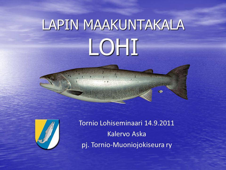 LAPIN MAAKUNTAKALA LOHI Tornio Lohiseminaari 14.9.2011 Kalervo Aska pj. Tornio-Muoniojokiseura ry