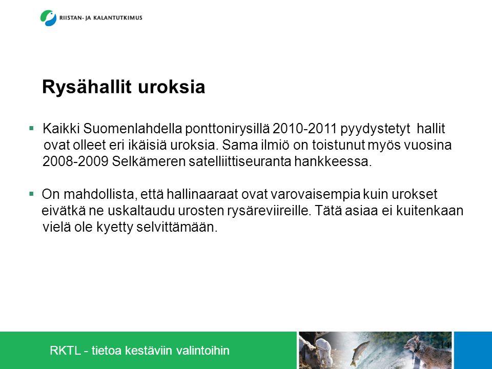 RKTL - tietoa kestäviin valintoihin 14  Kaikki Suomenlahdella ponttonirysillä 2010-2011 pyydystetyt hallit ovat olleet eri ikäisiä uroksia.