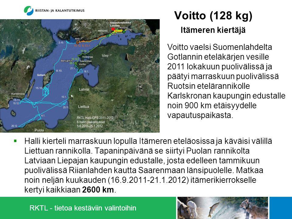 RKTL - tietoa kestäviin valintoihin Voitto (128 kg) Itämeren kiertäjä  Halli kierteli marraskuun lopulla Itämeren eteläosissa ja käväisi välillä Liettuan rannikolla.