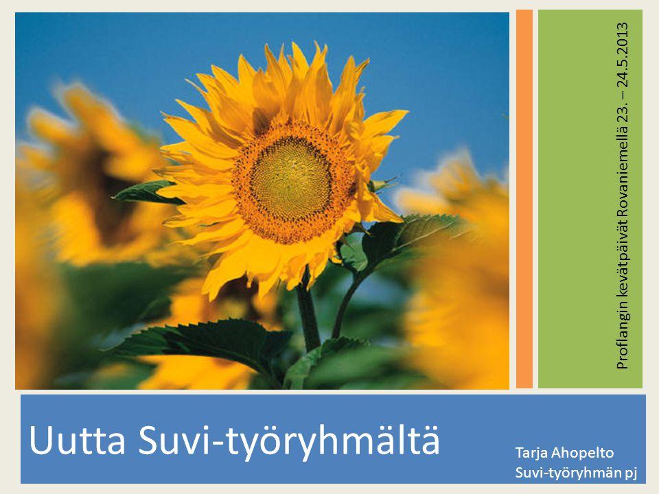 Uutta Suvi-työryhmältä Tarja Ahopelto Suvi-työryhmän pj Proflangin kevätpäivät Rovaniemellä 23.