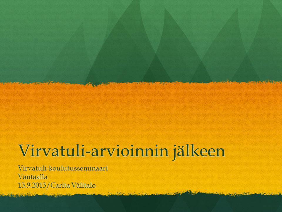 Virvatuli-arvioinnin jälkeen Virvatuli-koulutusseminaariVantaalla 13.9.2013/Carita Välitalo