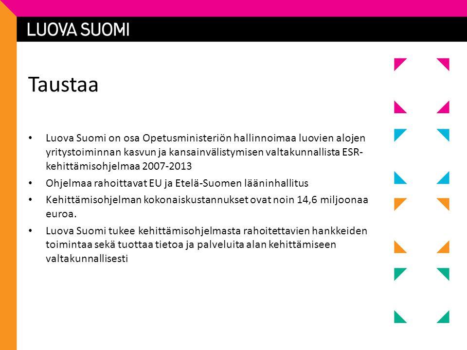 Taustaa • Luova Suomi on osa Opetusministeriön hallinnoimaa luovien alojen yritystoiminnan kasvun ja kansainvälistymisen valtakunnallista ESR- kehittämisohjelmaa 2007-2013 • Ohjelmaa rahoittavat EU ja Etelä-Suomen lääninhallitus • Kehittämisohjelman kokonaiskustannukset ovat noin 14,6 miljoonaa euroa.
