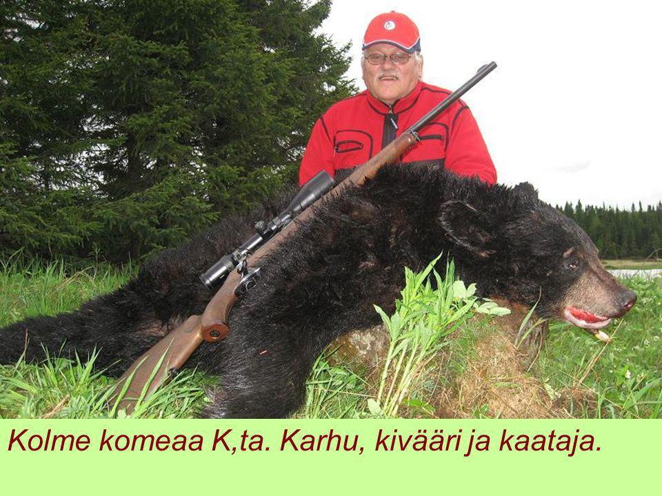 Kolme komeaa K,ta. Karhu, kivääri ja kaataja.
