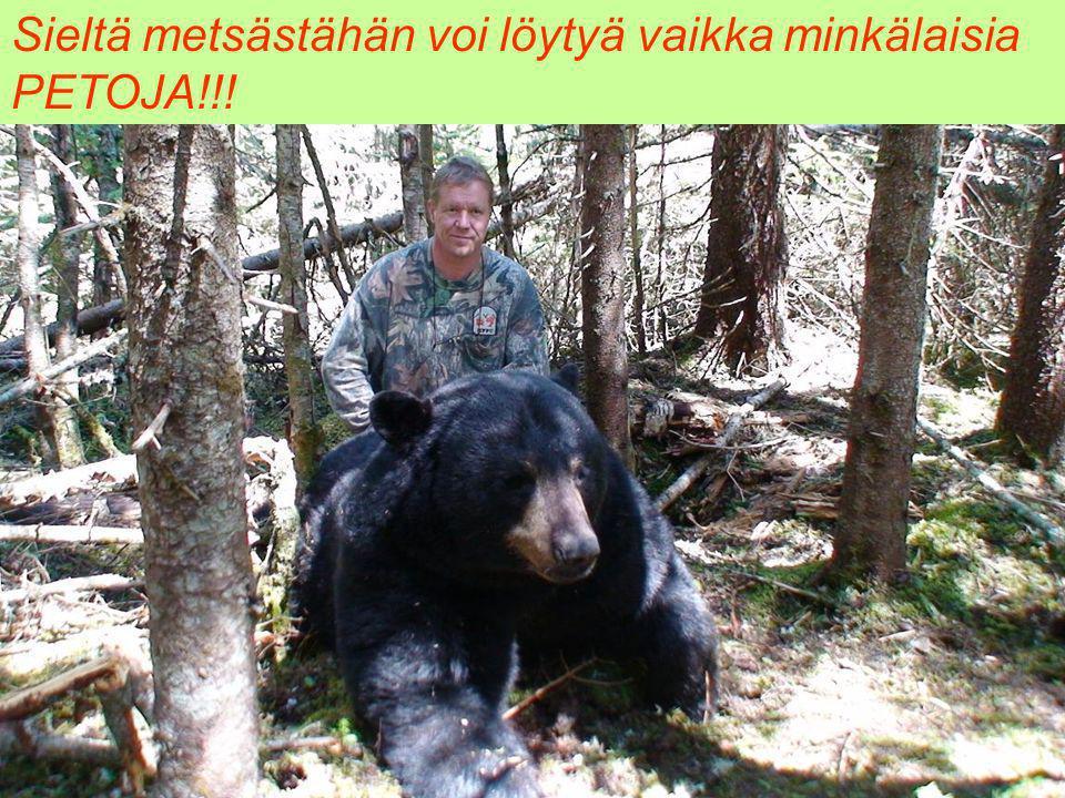 Sieltä metsästähän voi löytyä vaikka minkälaisia PETOJA!!!