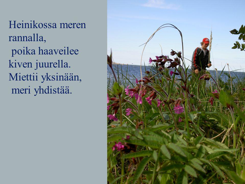 Heinikossa meren rannalla, poika haaveilee kiven juurella. Miettii yksinään, meri yhdistää.