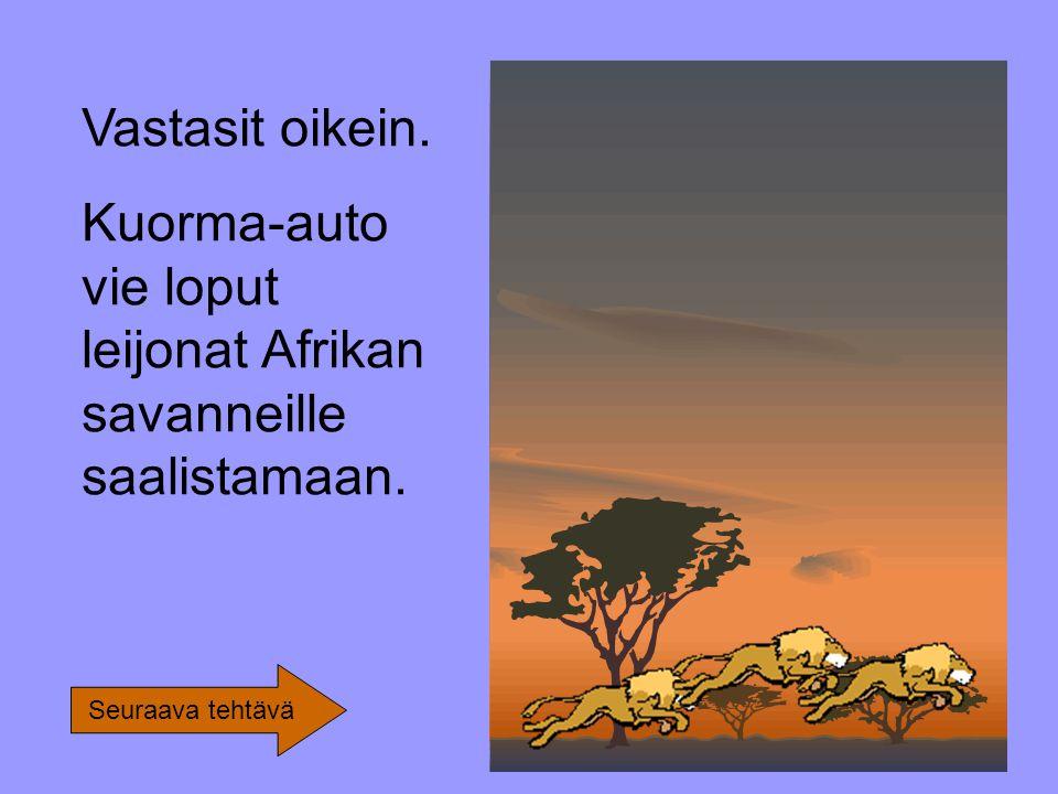 Vastasit oikein. Kuorma-auto vie loput leijonat Afrikan savanneille saalistamaan. Seuraava tehtävä
