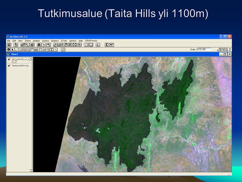 Tutkimusalue (Taita Hills yli 1100m)