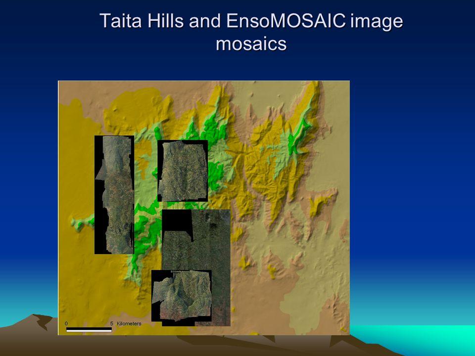 Taita Hills and EnsoMOSAIC image mosaics