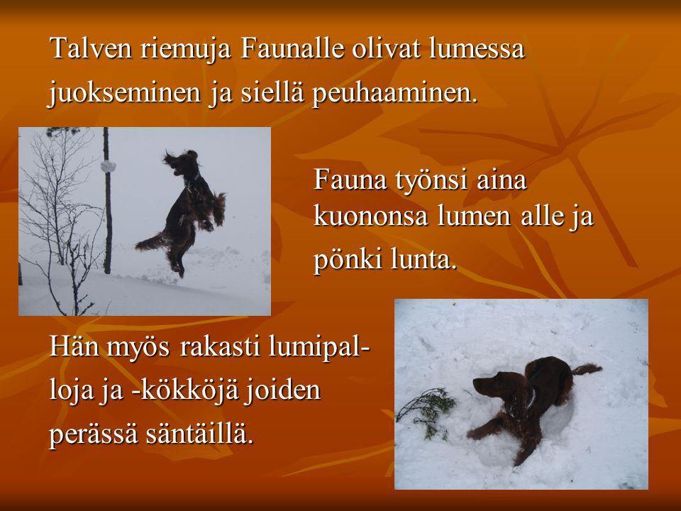 Talven riemuja Faunalle olivat lumessa Talven riemuja Faunalle olivat lumessa juokseminen ja siellä peuhaaminen.