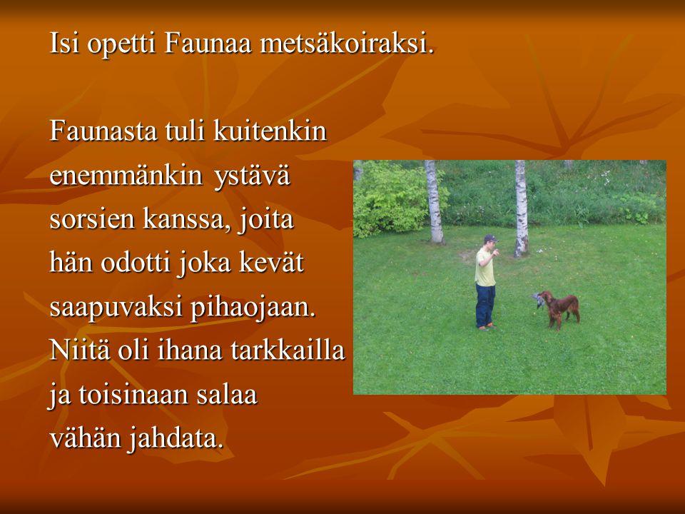 Isi opetti Faunaa metsäkoiraksi. Isi opetti Faunaa metsäkoiraksi.