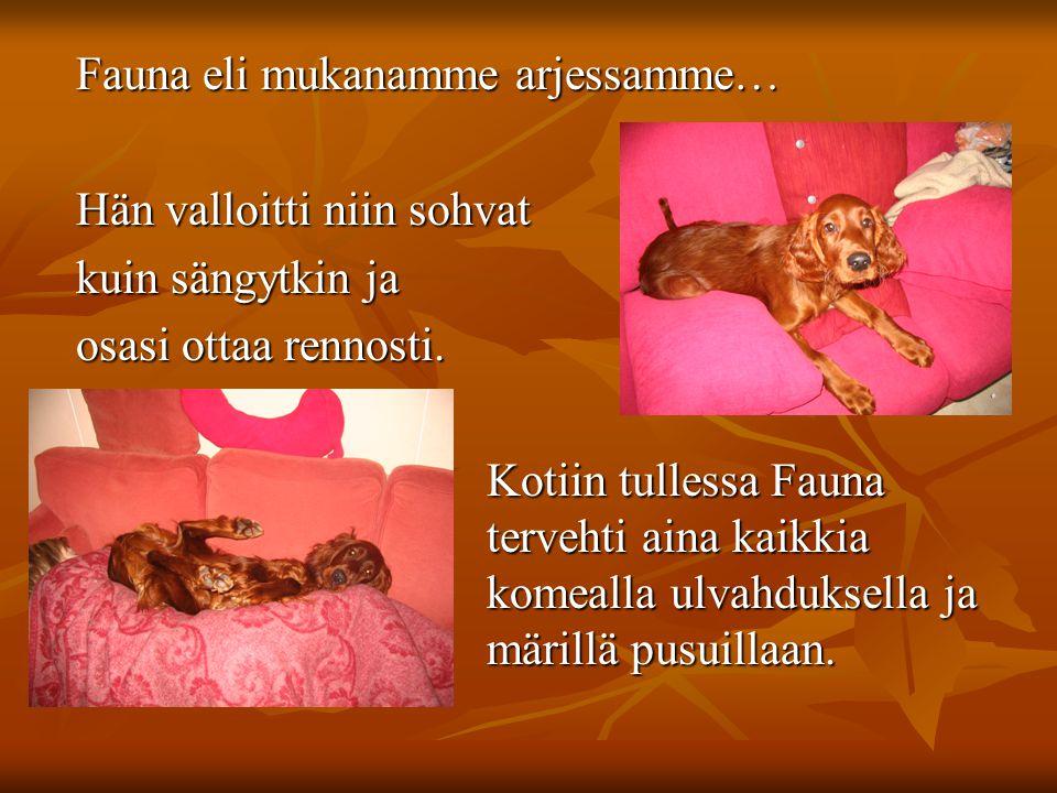 Fauna eli mukanamme arjessamme… Fauna eli mukanamme arjessamme… Hän valloitti niin sohvat Hän valloitti niin sohvat kuin sängytkin ja kuin sängytkin ja osasi ottaa rennosti.