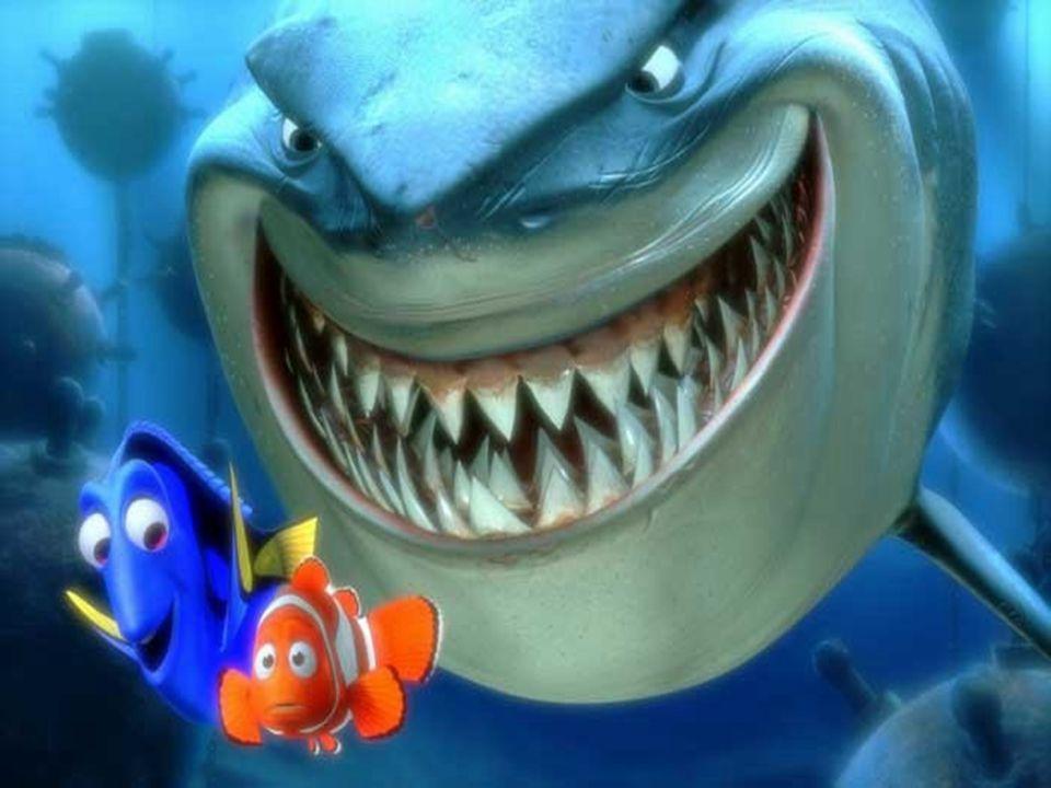 Onkohan Nemo kotona..