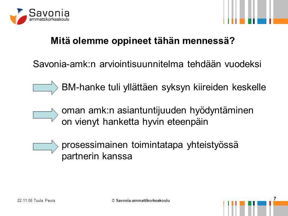 22.11.06 Tuula Peura 7 © Savonia-ammattikorkeakoulu Mitä olemme oppineet tähän mennessä.