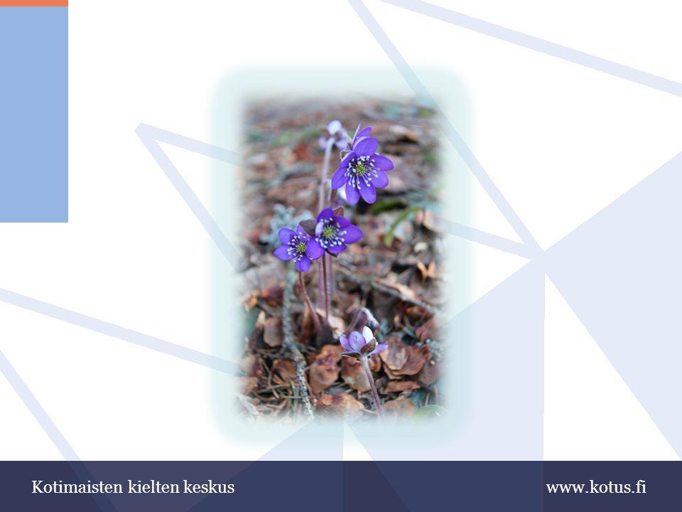 www.kotus.fiKotimaisten kielten keskus