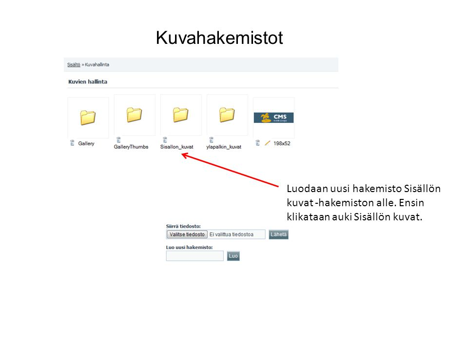 Kuvahakemistot Luodaan uusi hakemisto Sisällön kuvat -hakemiston alle.