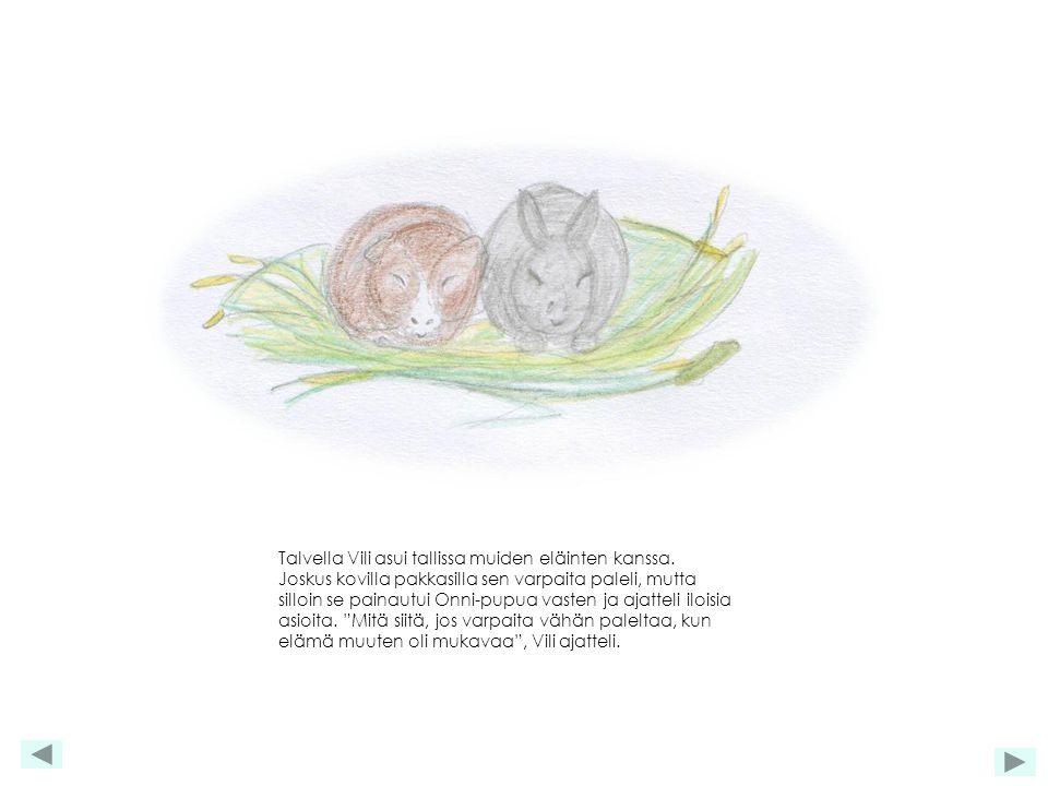 Talvella Vili asui tallissa muiden eläinten kanssa.